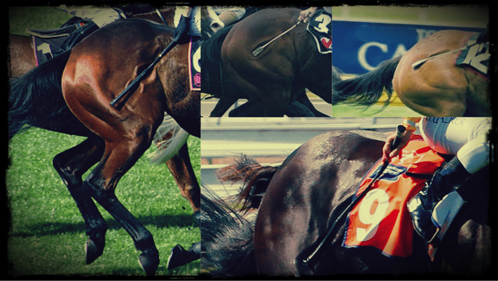 The image shows the close of four race horses as they are whipped.  In each case a ver y clear and deep indentation can be seen in the horses flank.