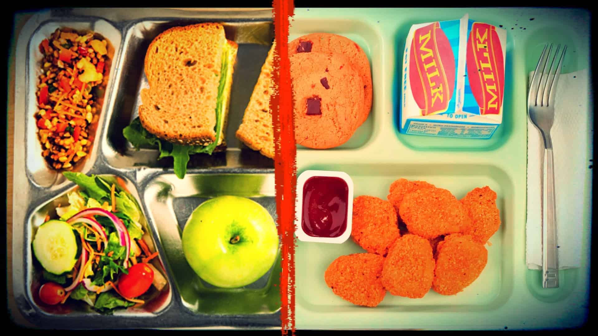 Two partial images are shown, separated by a vertical red line. The left-hand image shows a selection of vegan food upon a metal food tray. There is an apple, a sandwich, a colorful salad and a selection of dried fruits and nuts. In the second image, a second food tray is shown. It contains a carton of milk, seven chicken nuggets with dipping sauce, a cookie and a fork.