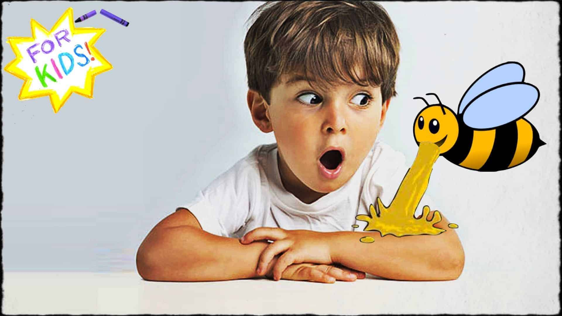 """A young child is shown sat at a table. Their arms are folded and resting upon the table. A large cartoon bee is seen to be regurgitating honey onto the child's arm. The child has a look of awe upon their face. A white and yellow star is shown in the top left-hand corner. The appearance is one rendered in crayon. Across the center of the star are the words """"For Kids""""."""