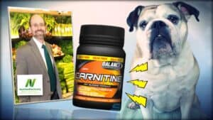 Dr. Greger of NutritionFacts.org is seen as an inset photograph on the left. In the center is a bottle of carnitine. On the right is an image of Emily Moran Barwick of Bite Size Vegan beloved bulldog, Ooby.