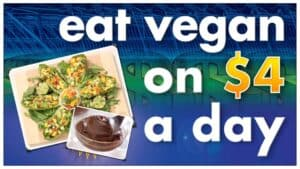 """The image has a blue green background. In large white letters are the words """"Eat vegan on $4 a day"""". The $4 is in gold. In the lower left corner are two photographs. The larger shows a delicious looking vegan meal of diced fruits and vegetables on a bed of green leaves. The smaller photograph, at an angle and partially covering the first, is of a delightful chocolate mousse."""