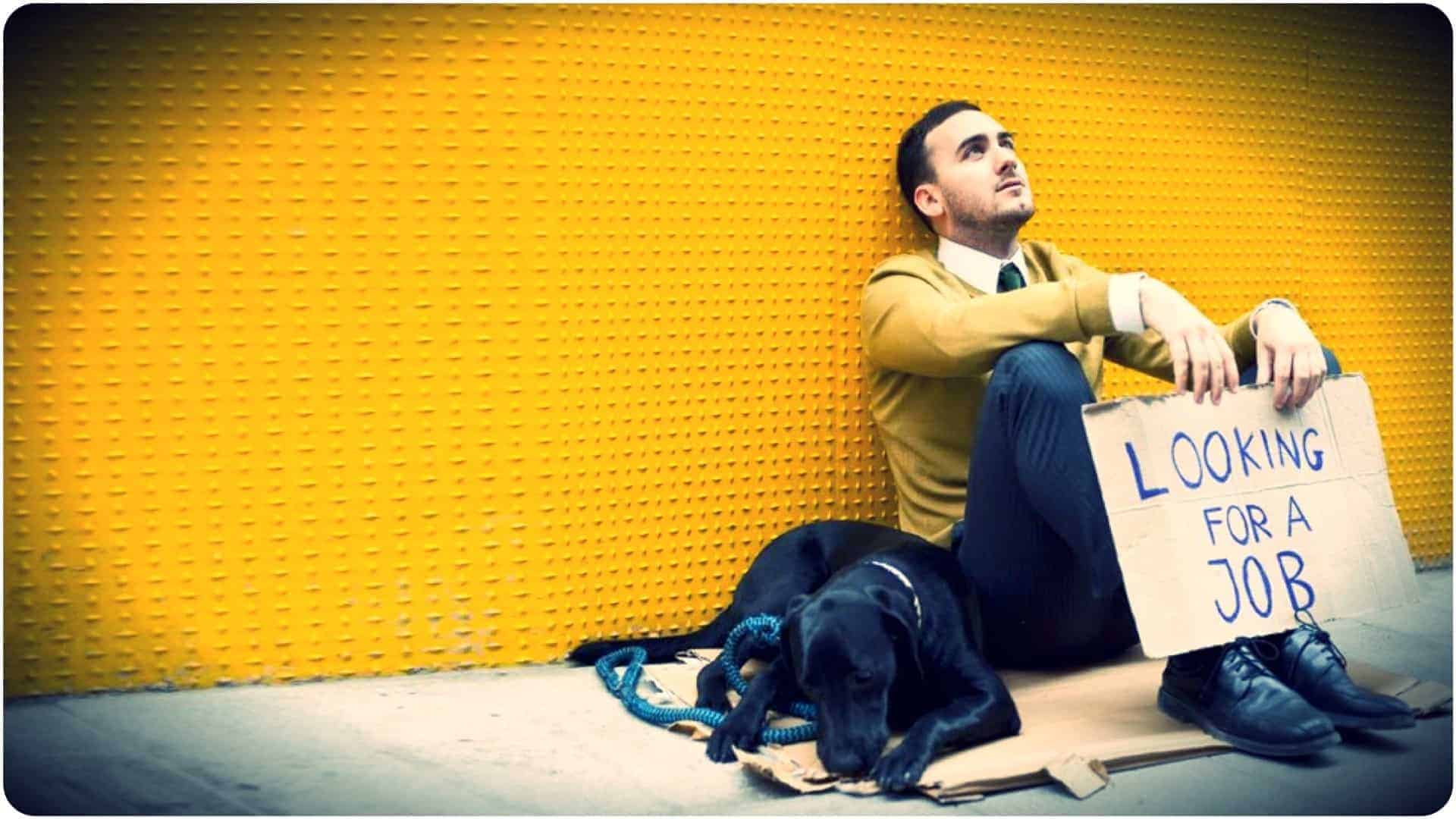 """A smartly dressed person holding a handwritten sign with """"Looking for a job"""" written upon it, sitting atop a piece of cardboard on the sidewalk along side a beautiful black dog."""
