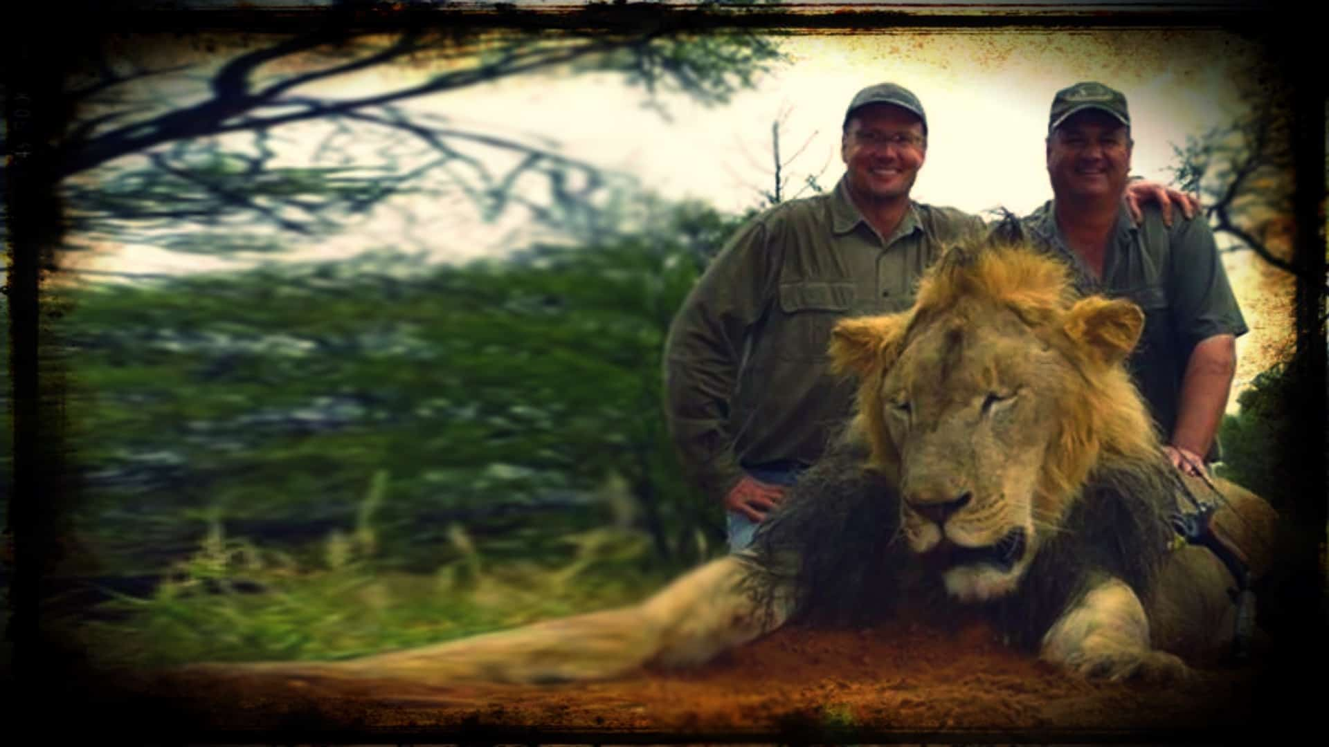 American dentist Walter Palmer is shown with another, pose for a photograph over the poor body of Cecil, a murdered lion.