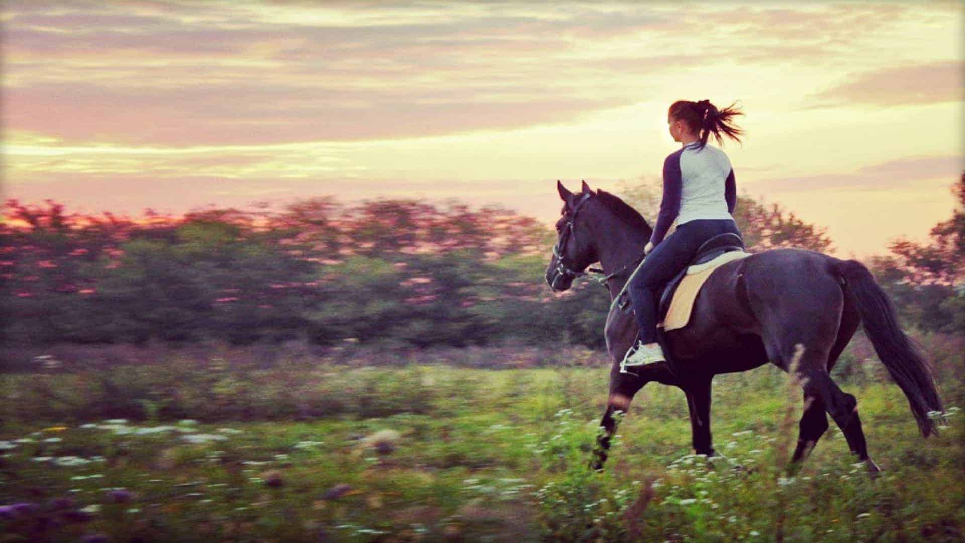 A woman riding a horse through a field at dusk; the horse is saddled, bridled, and bitted, with the reigns held by the woman.