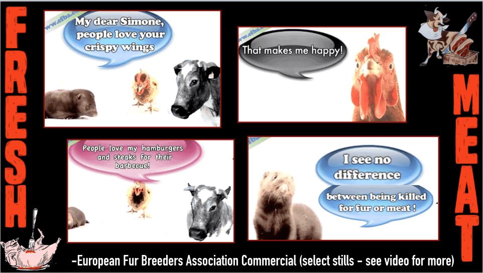 Screen shots from European fur breeders association commercials.