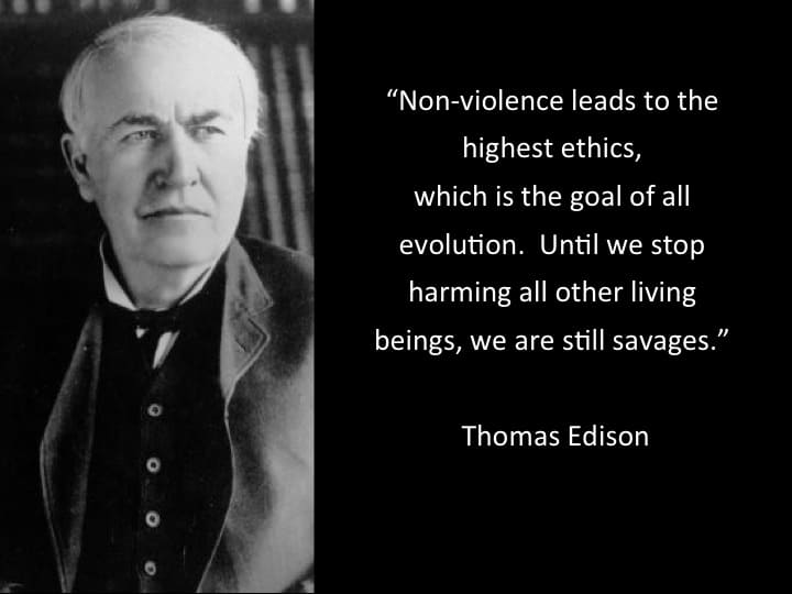"""Thomas Edison in a period suit, to the right is a black background with his quote in white lettering: """"Non-violence leads to the highest ethics, which is the goal of all evolution. Until we stop harming all other living beings, we are still savages."""""""