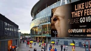 large outdoor city scene with large buildings with large billboard type ads showing a cow with tears running down it's face and the words Like us - they feel - go vegan. There are a lot of people walking around