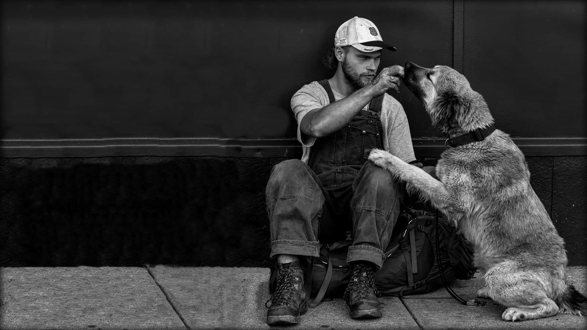 A person is shown sat, on the pavement, up against a wall with their kneed pulled in. A senior dog is next to the person, sitting up with its front paws on the person's knee. The person is in the process of feeding the dog a small treat.