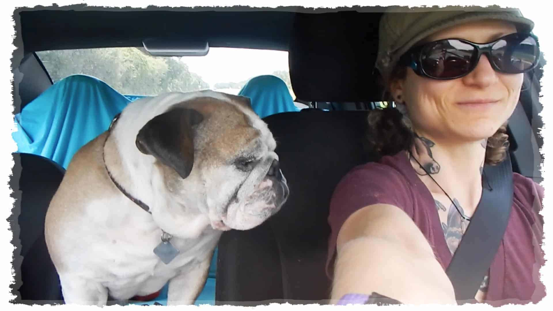 Emily Moran Barwick of Bite Size Vegan is shown behind a steering wheel, her beloved bulldog, Ooby sitting along side her.