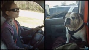 In a split image, Emily Moran Barwick of Bite Size Vegan is shown is shown on the left, he beloved bulldog, Ooby , on the right.