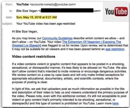 """The image of a part of an email sent to Bite Size Vegan.  It states that """"The Extremeism of Veganism 