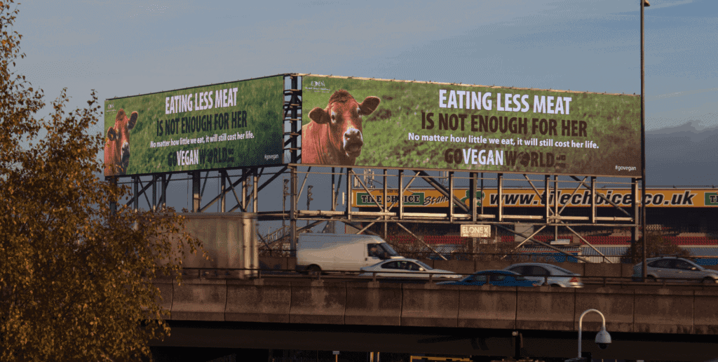 """The image is of two huge roadside billboards.  Both posters are the same.  A brown """"beef"""" cow is shown in the left hand corner looking up towards the camera.  Taking up the majority of the poster, in capitals  are the words: Eating less meat is not enough for her. In smaller letters are the words: No matter how little we eat, it will still cost her life.  Below this is the GoVeganWorld.com logo."""