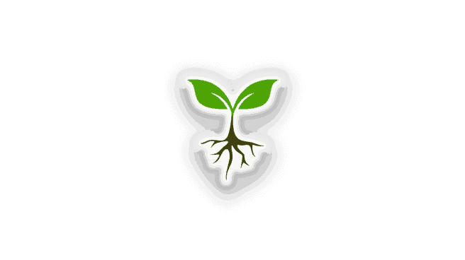 An illustration of a plant with two leaves in a V formation, with roots reaching down into the ground, symbolizing the grounding and stability needed to stay vegan.