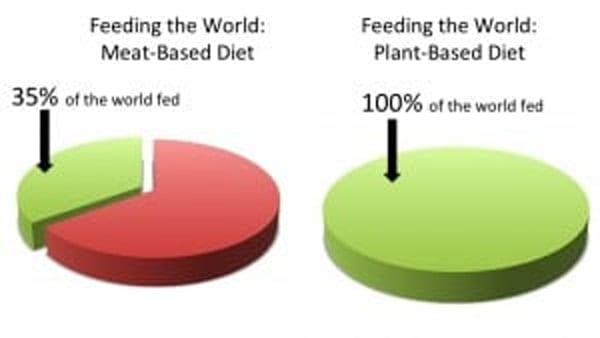 """The image shows two pie charts. The one on the left has the title of """"Feeding The world: Meat-based diet"""". The pie is mostly red with a slice green labeled as 35% of the world fed. The second pie is entitled """"Feeding the world: Plant-based diet"""". The pie is solid green and is labelled 100% of the world fed."""